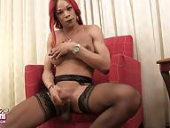Kiara Cannon is a sexy tgirl with a hot body, big boobs and a huge hard cock! See this horny transgirl shaking her lovely bubble butt and a stroking her monster cock!